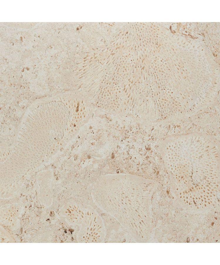 gresie imitatie coral fosilizat